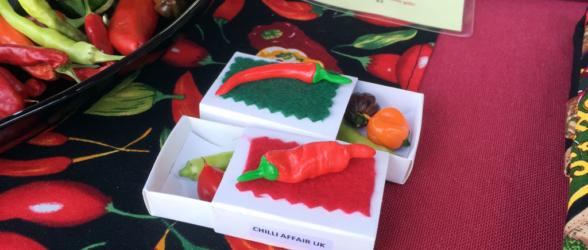 cheese-and-chilli-festival-winchester