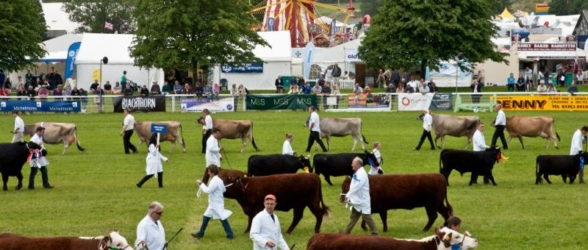 royal-bath-and-west-show