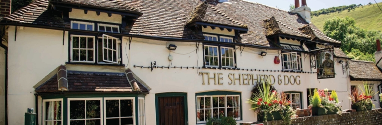 Shepherd & Dog Beer Festival