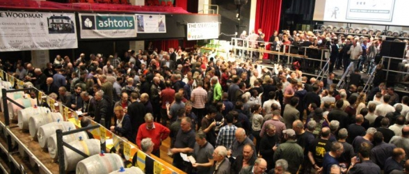 St Albans Beer & Cider Festival