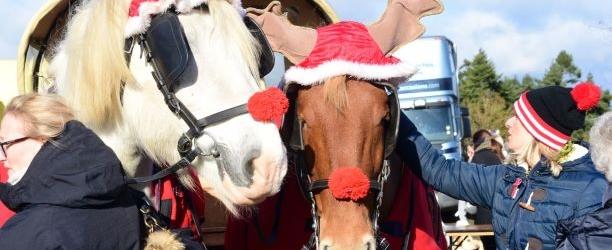Berkshire Christmas Festival