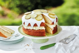12 Tasty Gin & Tonic Cake Recipes To Try