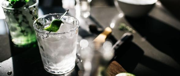 The Gin To My Tonic Festival Cheltenham