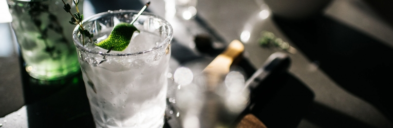 The Gin To My Tonic Festival Cheltenham
