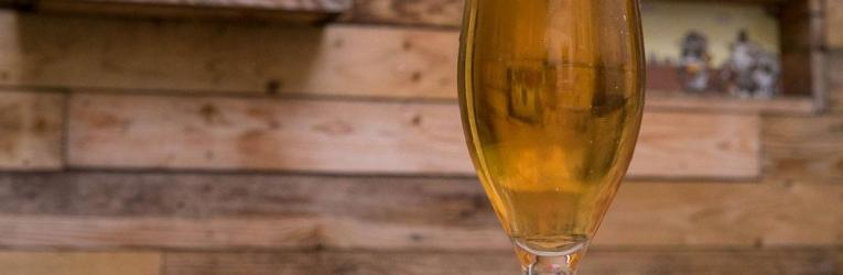 Ipswich Beer Festival