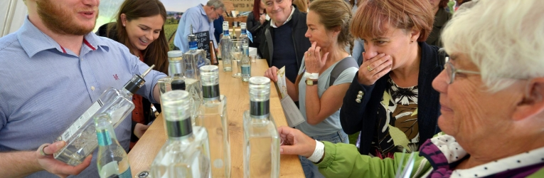Sussex Gin And Fizz Festival